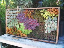Sensational Succulent Living Wall With Cool DIY Green Projects For Your Home