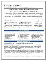 Vice President Of Finance Resume Sample Director