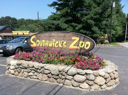 Southwick Zoo Coupons Discounts Bodyartforms Haul Reveal Unboxing Sharing Whatever You Call It Discount Coupons For Dorney Park Pi Hut Paytm Free Recharge Coupon Code 2018 Amzon Promo Best Whosale All Over Piercings Honda Pilot Lease Deals Nj Body Foreplay Coupons Ritz Crackers Tracking Alpine Adventures Zipline Bj Membership Tractor Supply Policy Scream Zone Hot Ami Styles Buy Appliances Clearance Guild Wars 2 Jcj Home Perfect