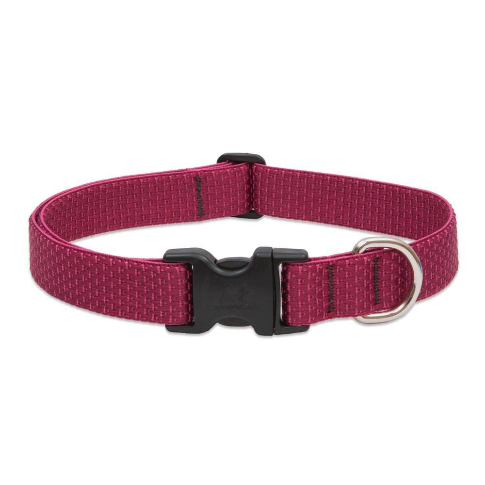Lupine Eco Collar - Berry