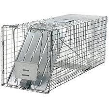 live cat trap havahart 1099 feral stray cat rescue kit feral cat