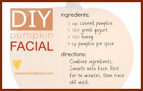 Pumpkin Pie Urban Dictionary by Blushing Basics November 2012