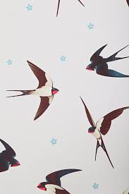 378 Best Birds Images On Pinterest | Bird Art, Swallows And Barn ... Pottery The Barn Swallow Beautiful Asian Design Flying Flower Vase Pitterandglink Kids Art Knock Off Wall Decor 82 Metal 221 Best Swallows Swifts Martins Images On Pinterest Swallows Chaing Table Wooden Recomy Tables Charming Diy Inspired Charley Harper Tapestry West Elm Au Best 25 Ideas Bird And Ikebana