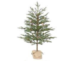 Potted Christmas Tree by Outdoor Lighted Potted Christmas Trees Best Images Collections