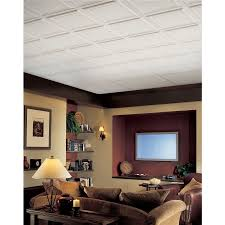 shop armstrong 6 pack single raised homestyle ceiling tile panels