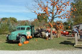 Pumpkin Patch Indiana County Pa by 15 Best Pumpkin Patches In The United States Sarah Scoop