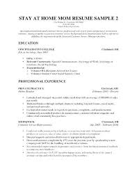 Resume Mistakes Examples With Funny Video Sample Stay At Home Mom