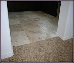 tile to carpet transition options tiles home design ideas