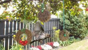 Realistic Artificial Christmas Trees Nz by Adventurous Christmas Trees Mitre 10