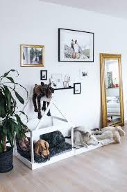 diy hundehütte für die wohnung und wand dekoration