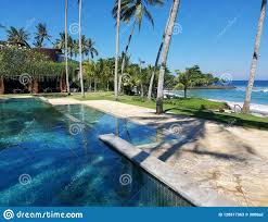 100 Bali Infinity Pool In Indonesia Stock Image Image Of Palm