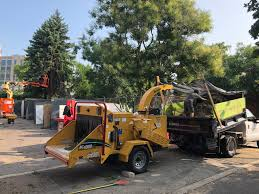 Offshoots Landscape Architecure Phytoremediation Arborist Wood ... Chipper Truck Tree Crews Service Equipment 2017 Ram 5500 Chip Box With Arbortech Body For Sale Youtube New Page 1 Offshoots Landscape Architecure Phytoremediation Arborist Wood 1988 Gmc 7000 Dump Used Sale 2018 Hino 195dc 10ft At Industrial Power 2007 Intertional I7300 4x4 Chipper Dump Truck For Sale 582986 1999 Ford F800 In Central Point Oregon 97502 1990 Topkick Chipper Truck Item K2881 Sold August 2 Bodies South Jersey