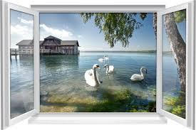 wandtattoo wandbild fenster natur see schwan wohnzimmer deko