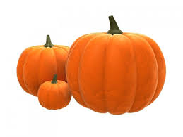 Shelled Pumpkin Seeds Nutritional Value by Pumpkin Seeds Health Benefits Nutritional Information