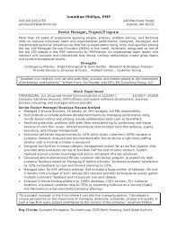 Security Director Resume It Manager Example Information Examples