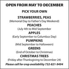 Pumpkin Picking In Freehold Nj by Central New Jersey Central New Jersey U Pick Farms Find A Pick