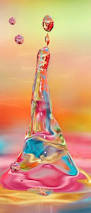 Fred Meyer Lava Lamps by Gerber Daisies Love Pinterest Gerber Daisies