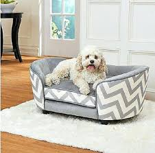best furniture for dogs wplace design