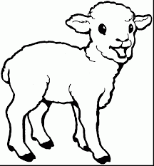 Fabulous Lamb Coloring Pages For Kids With Page And Book