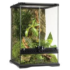 Extra Large Aquarium Decorations by Exo Terra Natural Terrariums For Reptiles Petsolutions