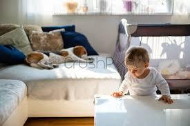 baby spielt mit blöcken auf teppich im wohnzimmer beagle