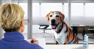 100 Tiger Truck Stop Louisiana REPORT Interviews For New LSU Mascot Not Going Too Well The