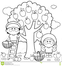 Royalty Free Vector Download Children Harvesting Apples Coloring Book Page