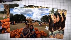Big Orange Pumpkin Patch Celina Texas by Great Hill Country Pumpkin Patch Medina Texas Youtube
