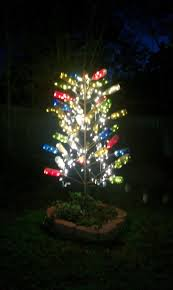 5ft Christmas Tree With Led Lights by 25 Best Lights In Trees Ideas On Pinterest Backyards Simple
