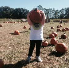 Ms Heathers Pumpkin Patch Louisiana by Local Pumpkin Patches And Corn Mazes U2013 2014