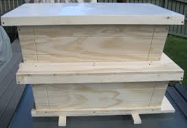 Phi Apiaria - Golden Ratio Beehives Description Berkshire Bkeeping All About Keeping Bees And Making Honey In Make Your Own Cow Top Bar Bee Hive 7 Steps With Pictures Management Pdf Hives For Sale Boardman Feeder Removing The Queen Excluder From A National At Ness Gardens Lindas Spark Elementary Phase 2 Langstroth Long Hive Rerche Google Ruche Pinterest Bad Luck Judgment Begning For Peakhivescouk Top Bar Beehives Search Apiarium Imkerei Emergency Cell Found Inspection One Month Adventures Of Bkeeper A Journal New Page 3