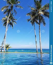 100 Bali Infinity Pool In Indonesia Stock Image Image Of