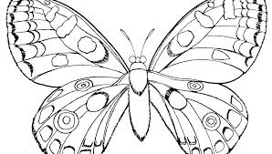 Coloring Page Of Butterfly Free Picture Book Pages A