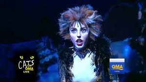 cats on broadway cats broadway medley live gma