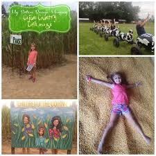 Trinity Pumpkin Patch Baton Rouge by 135 Best Cajun Halloween Images On Pinterest Diy Autumn And