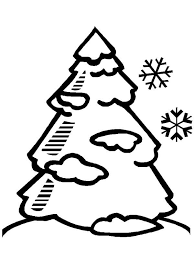 Coloring Pages Winter Tree A Pine Tree Covered With Snow Winter