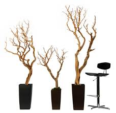 Ebay Christmas Trees Uk by Treelocate Artificial Plants U0026 Flowers Product Focus Manzanita