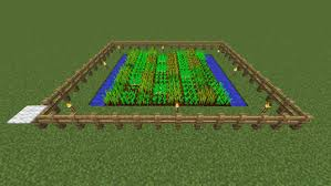 Minecraft Melon Seeds by How To Grow Crops In Minecraft Dummies