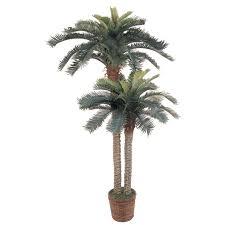 6ft Pre Lit Christmas Tree Sainsburys by 6 U0027 And 4 U0027 Sago Palm Double Potted Silk Tree Walmart Com