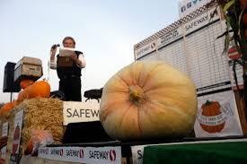 Pumpkin Contest Winners 2015 by Half Moon Bay Ca California Contest Dubs 1 969 Pound Pumpkin