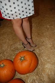 Pumpkin Patch Irvine Jeffrey by Faux Fur Borderline Fab