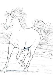 Realistic Horse Head Coloring Pages 2649230