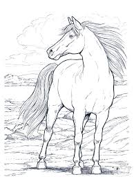 Free Printable Unicorn Coloring Pages Lovely Realistic Horse 3802