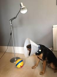 Luxo Jr Lamp Model by Samuel Pinney Ginbrogueshats Twitter