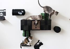 cat merchandise cat vertical space 101 the ultimate guide