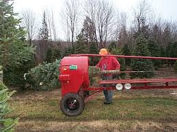 Wholesale Christmas Trees Getting Baled With Howey Baler