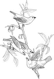 Painted Art Bunting Birds On Tree Coloring Page