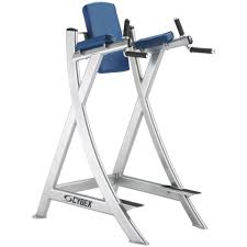 Captains Chair Workout Machine by Cybex Leg Raise Chair Gym Source