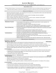 Marketing Executive Resume Samples Senior Sales Executive Resume Samples And Templates Visualcv Package Services Template 31 Free Wordpdf Indesign Ideal Advertising Inside Tips Tipss Und Vorlagen Account Writing Companion Top 8 Inside Sales Executive Resume Samples New Elegant Languages Fresh Sample Print Cv Collection Examples For And Real Examlpes