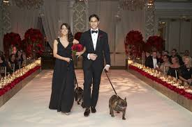 Red Roses Bridesmaid In Black Groomsman Tuxedo Walking Pugs Down Aisle